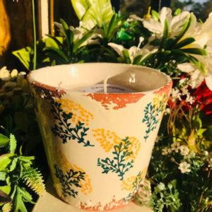 vela jardin amarillo waxdesign velamarket mimosas